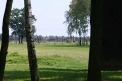 birkenau_7