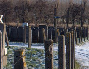 Veld U is het veld waar de gecremeerde stoffelijke overblijfselen van Nazi-slachtoffers uit Westerbork zijn begraven. De foto's zijn gemaakt in januari 2011.