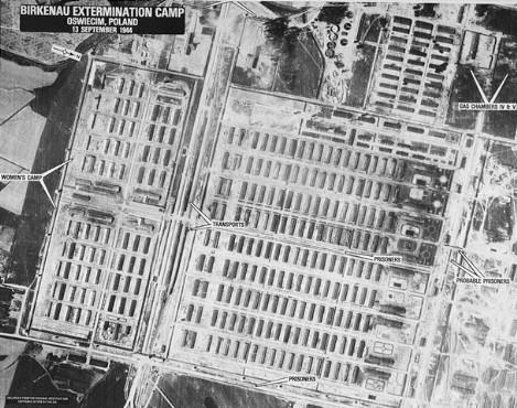 Auschwitz-Wartime 1