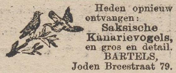 jodenbree79bartels